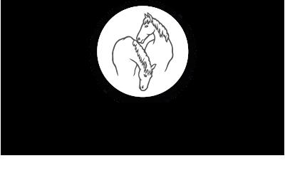 paard epileptische aanval